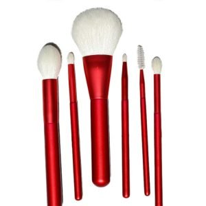 6 Pcs Cosmetic Brush Set