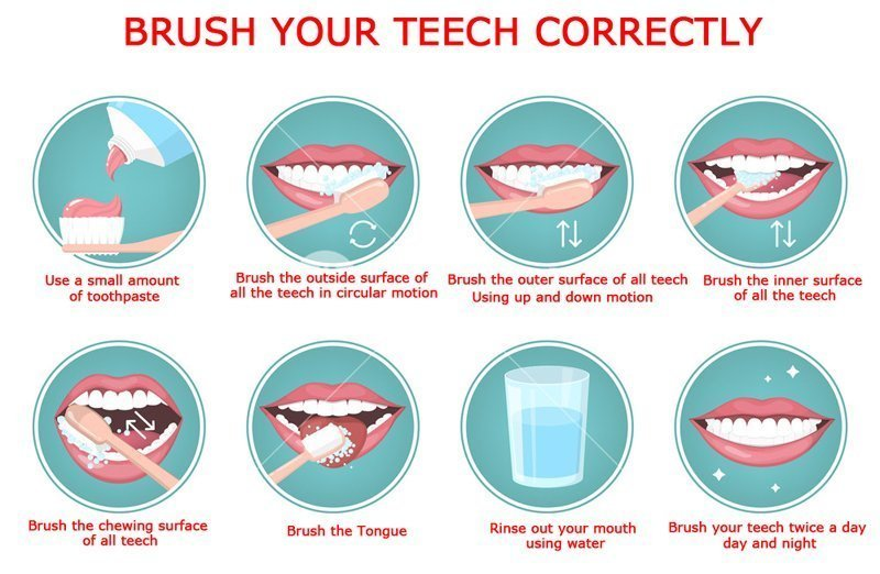 Brush Your Teech Correctly