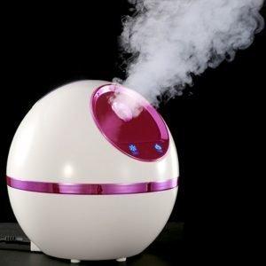 Nano Ion Beauty Sprayer Facial Steamer